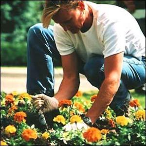 cok-gardener[1]